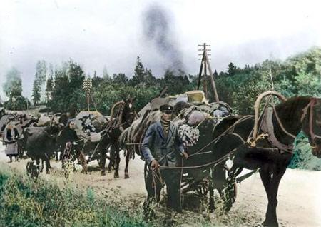 Svabe-bezanje-pred-Crvenom-armijom-i-partiznima