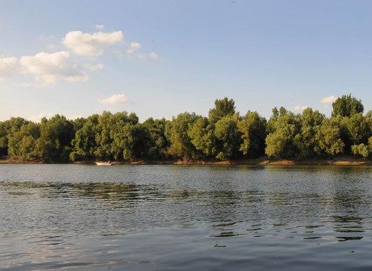 Tisa-river