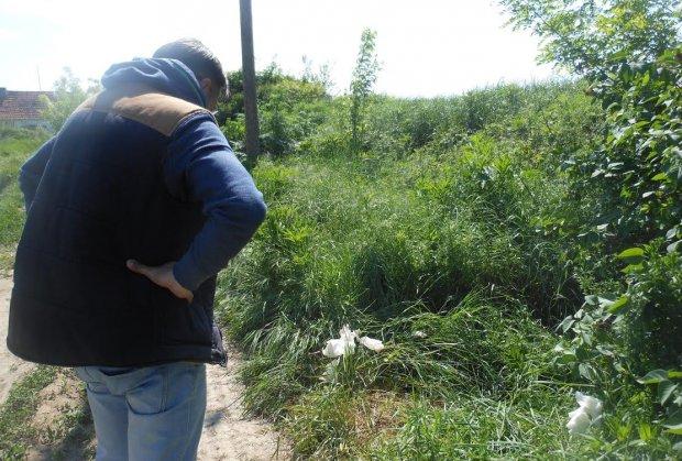 coka-ubistvo-foto-sasa-urosev-1462702634-901345