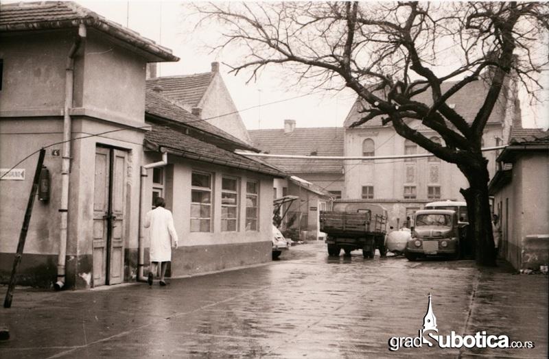 stara mlekara subotica (4)