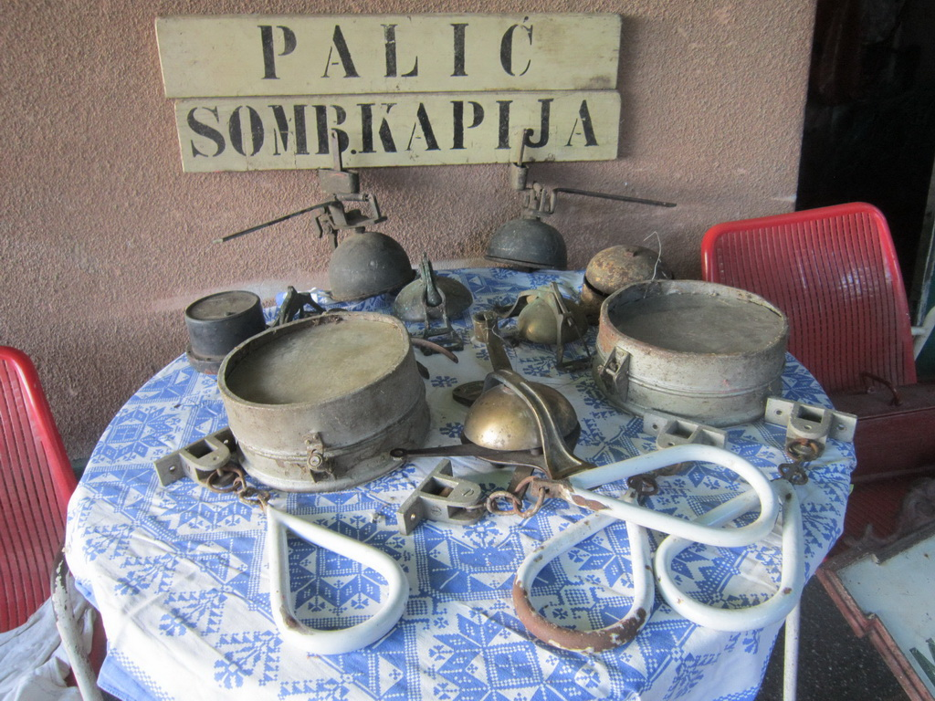 http://www.gradsubotica.co.rs/wp-content/uploads/2019/02/sorsegi-palics-1.jpg